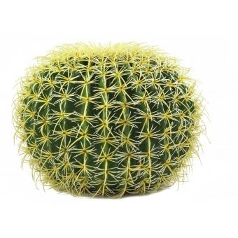 EUROPALMS Golden Barrel Cactus, 48cm