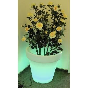 EUROPALMS LED Flower Pot 67x64cm #2