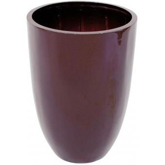 EUROPALMS LEICHTSIN CUP-49, shiny-brown