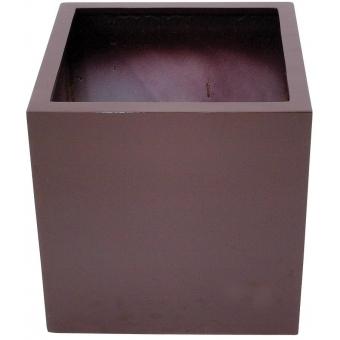 EUROPALMS LEICHTSIN BOX-50, shiny-brown #2