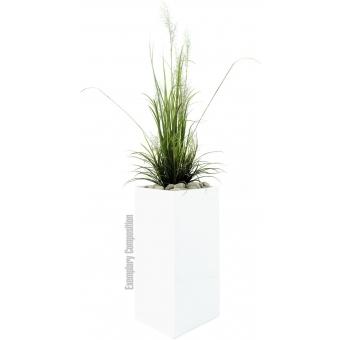 EUROPALMS LEICHTSIN BOX-80, shiny-white #3