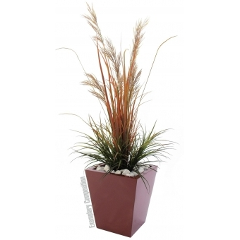 EUROPALMS LEICHTSIN BASIC-50, shiny-red #3