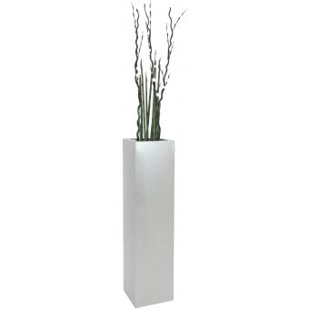 EUROPALMS LEICHTSIN BOX-120, shiny-silver #7
