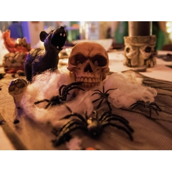 EUROPALMS Halloween spider web white 20g UV active #5
