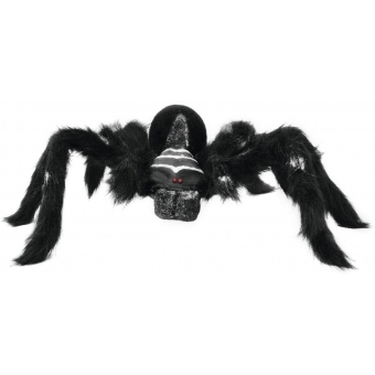 EUROPALMS Spider REAL, black coat