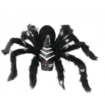 EUROPALMS Spider REAL, black coat #2