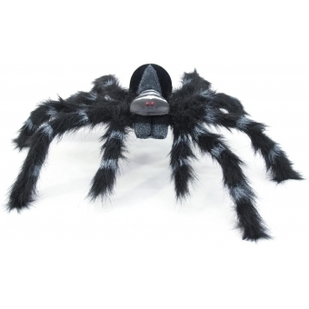 EUROPALMS Spider REAL, black coat #3