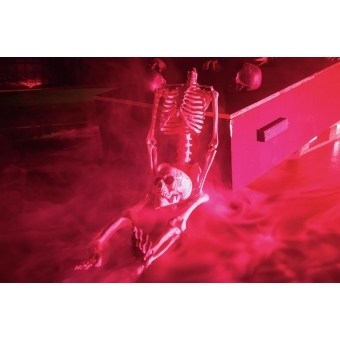 EUROPALMS Skull, black #4