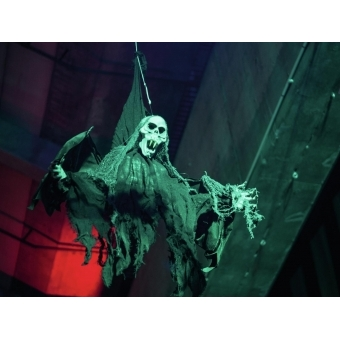 EUROPALMS Halloween figure bat ghost 85cm #5
