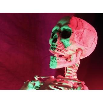 EUROPALMS Halloween Skeleton #3