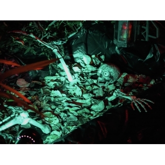 EUROPALMS Halloween Skeleton #6