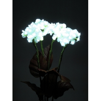 EUROPALMS Hydrangea, white, with flowers, 100 LEDs #4