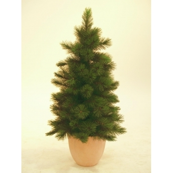 EUROPALMS Mini fir tree, 90cm #2