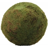 EUROPALMS Moss ball, green, ca.50cm