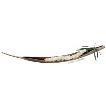 EUROPALMS Galara leaf XXL, dried, natural #7