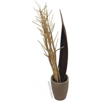 EUROPALMS Galara leaf XXL, dried, natural #11