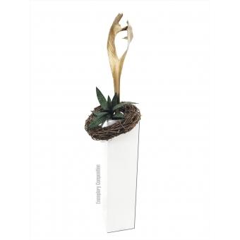 EUROPALMS Palm leaf, dried, gold #6