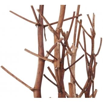 EUROPALMS Fennel bunch, dried, gold, 160cm #3