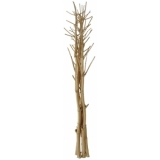 EUROPALMS Fennel bunch, dried, gold, 160cm