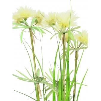 EUROPALMS Star grass, 120cm #2