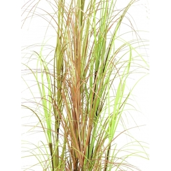 EUROPALMS Grass bush, 150cm #2