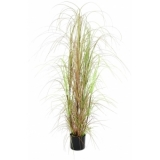 EUROPALMS Grass bush, 150cm