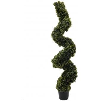 EUROPALMS Boxwood Spiral, 150cm