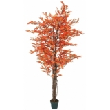 EUROPALMS Ficus tree multi-trunk, orange, 180cm
