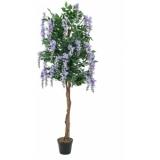 EUROPALMS Wisteria, purple, 240cm