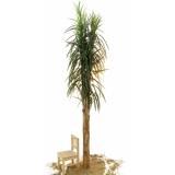 EUROPALMS Date palm, 270cm