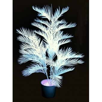 EUROPALMS Kentia palm, uv-white, 170cm