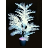 EUROPALMS Kentia palm, uv-white, 170cm