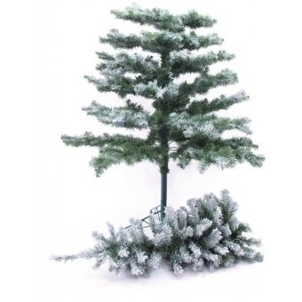 EUROPALMS Fir tree, snow-flocked, 240cm #2